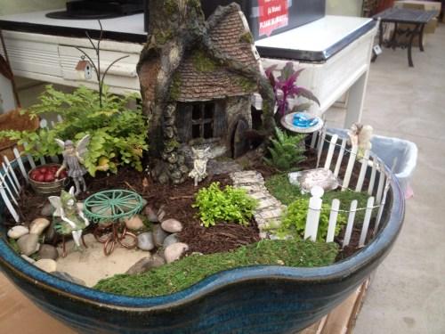 Medium Of Fairy Garden Pictures