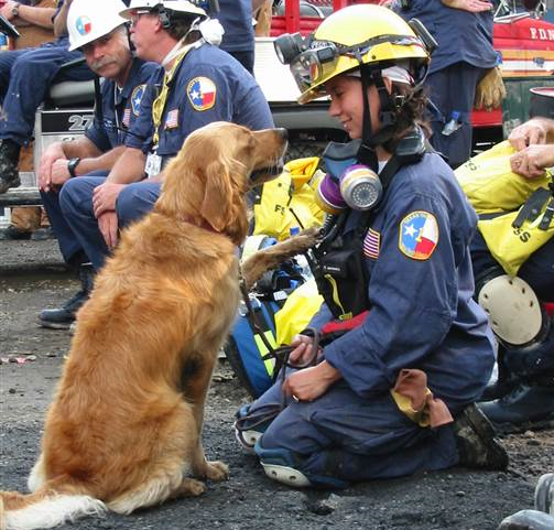 We love you, Bretagne: 9/11 Ground Zero search dog honored in 'My Old Dog' book