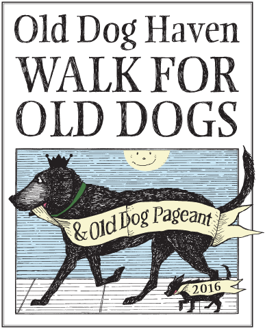 Walk for Old Dogs poster