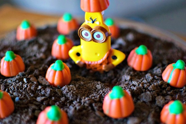 Minion Found in the Pumpkin Patch - My Pretty Brown Fit