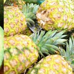 Smoothie King - Blend More Veggies