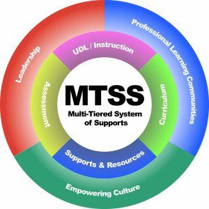 MTSS Wheel