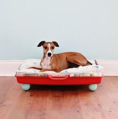 DIY Pet Bed