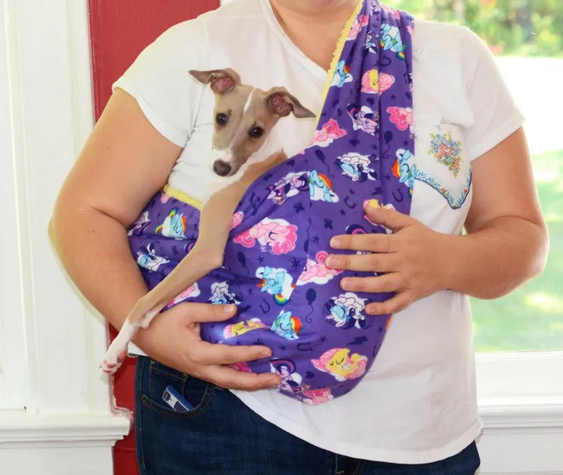 DIY Soft and Cozy Pet Sling