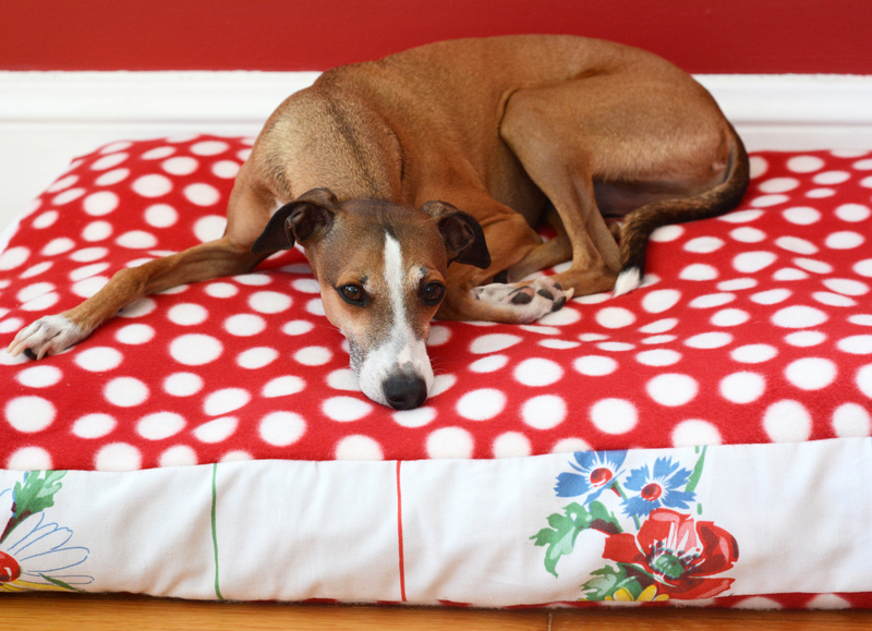 DIY Doggy Duvet Bed With a Vintage Tablecloth and Fleece
