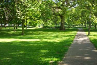 Support Sunset Green Space Redevelopment