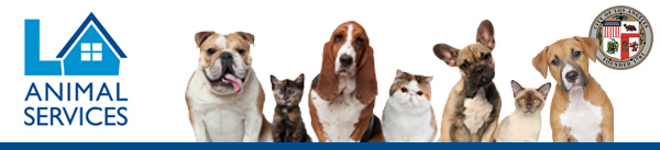 FREE SPAY / NEUTER FOR DOGS & CATS – AND – FREE VACCINATIONS FOR DOGS
