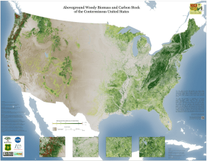 Locating trees around the US using data from SRTM, USGS and USFS