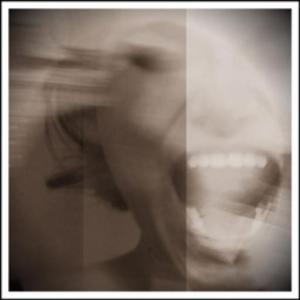 The Scream (vs 05)
