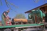 Saegekirschbaumkettensaege