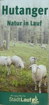 Hutanger: Natur in Lauf a.d. Pegnitz