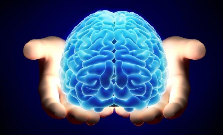 Brain And Hand Analysis