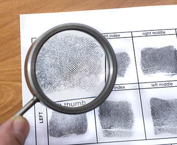 Hand and Fingerprint Analysis