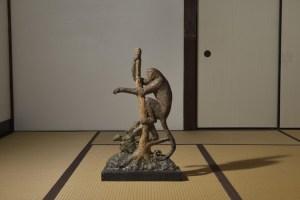深井聡一郎, 動物考 -猿-, 2016