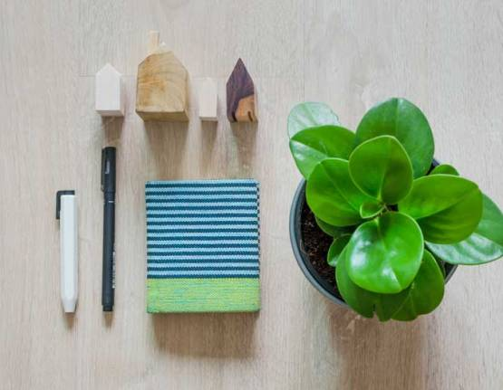 Seven Must-Have Home Essentials