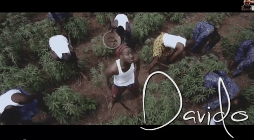 davido aye 500x276 [Video] Davido   Aye