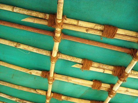 bambooImg.jpg