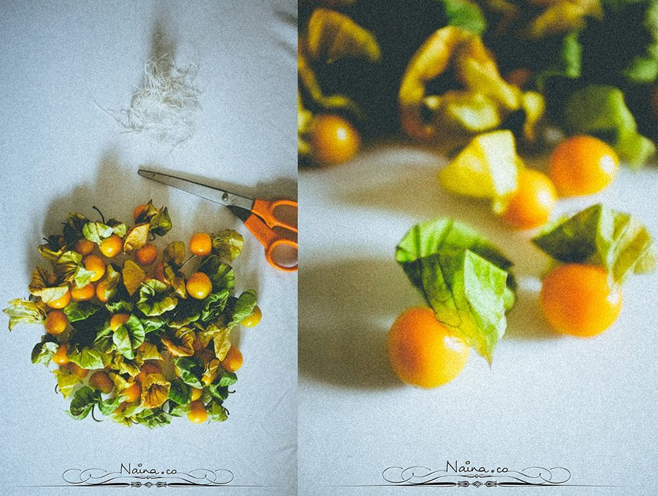 Physalis Berries Fine Art Food Photography, Lifestyle Photographer & Blogger Naina.co