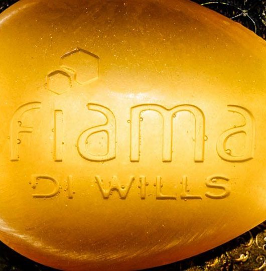 Fiama-Di-Wills-Wendell-Rodricks-Couture-Spa-Gel-Bar-Launch-Design-Naina.co-Raconteuse
