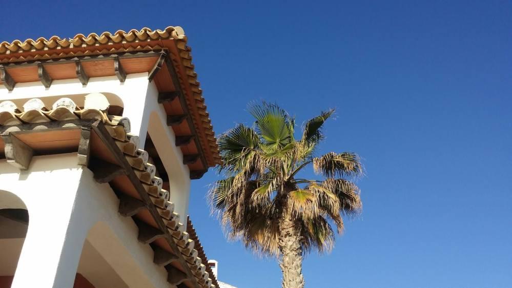 Ferienhaus mit Palmen