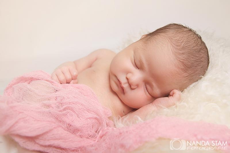 newborn fotoshoot (1) | Nanda Stam Fotografie
