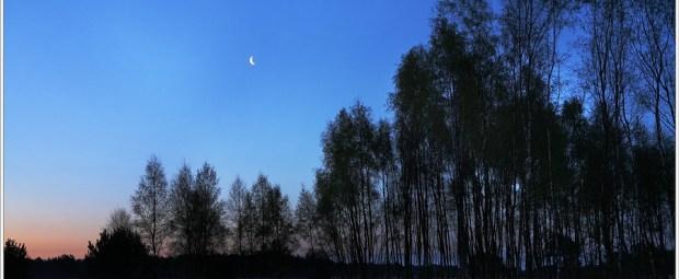 Cresent moon (5D029452)