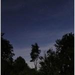 Strabrecht in the light of full moon(1D131075)