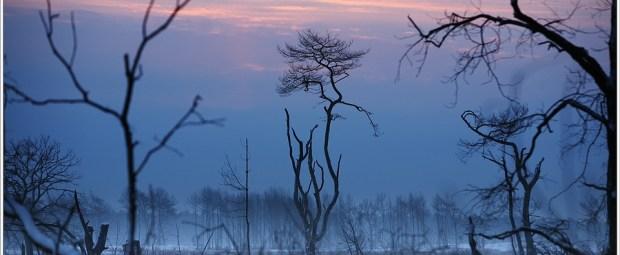 De kleuren van zonsopkomst