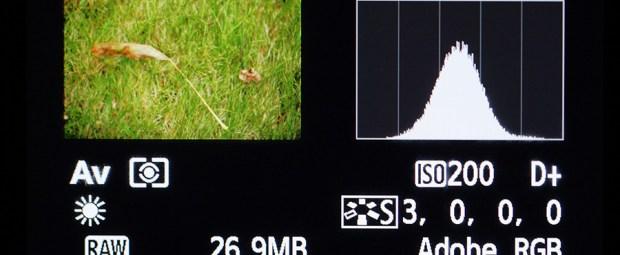 Het histogram op het scherm van een camera