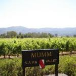 Napa Valley Upcoming Events February 4, 2016