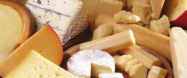 sagra del formaggio