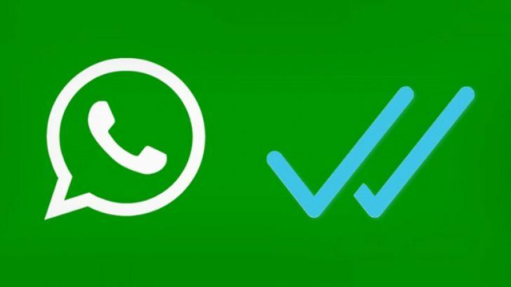 Whatsapp mavi tikler