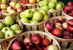 Elma nasıl daha uzun süre saklanır