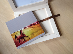 nathaliehupin-babybook-2784