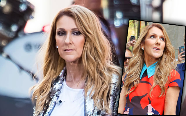 celine dion breakdown death mourning F