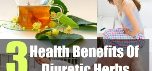 3 Health Benefits Of Diuretic Herbs