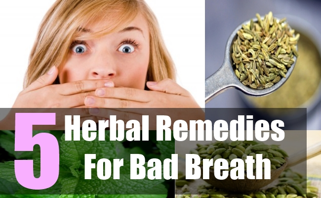 5 Herbal Remedies For Bad Breath