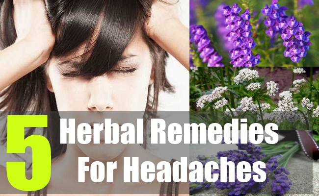 5 Herbal Remedies For Headaches