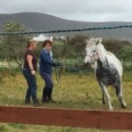 Natural Horsemanship Student Getting Lessons