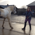 Horse Owner Learning Natural Horsemanship