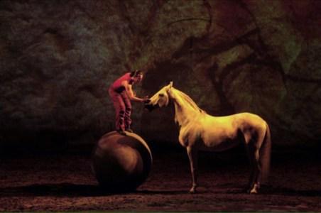natural horsemanship blog