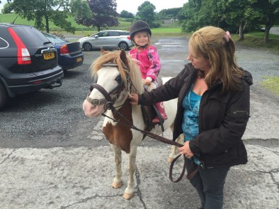 natural horsemanship ireland trainer