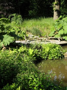 Pitts Pool, Shropshire