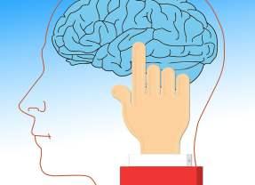 Alimentos para mantener un cerebro sano