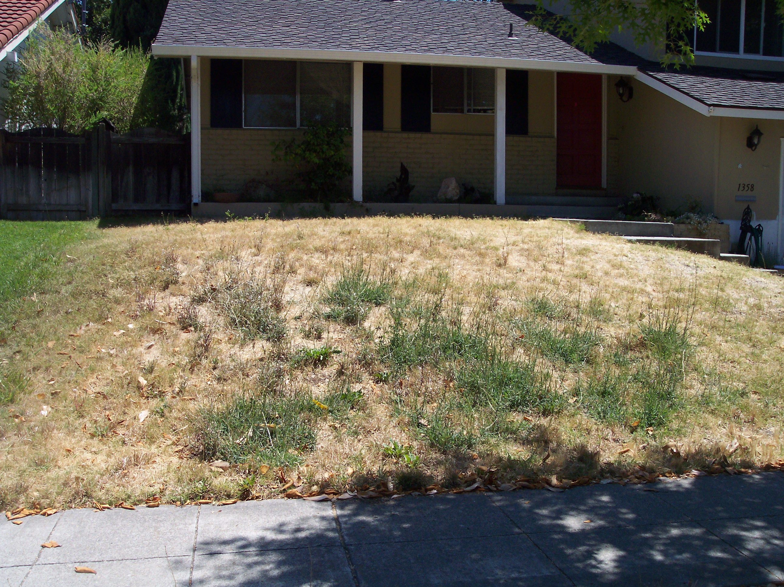 before and after natural front yards
