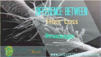 Hair Loss Breakage