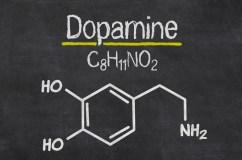 http://i1.wp.com/www.naturallivingideas.com/wp-content/uploads/2016/06/11-Easy-Ways-To-Boost-Dopamine-Without-Medication.jpg?resize=242%2C160