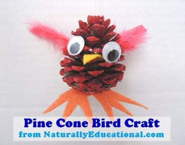 Pinecone bird craft