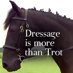 Naturally Gaited: Dressage is more than Trot