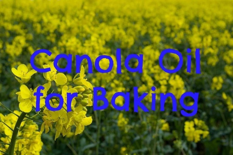 Canola Oil Natural Hair